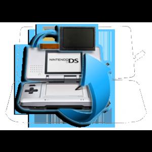 Remplacement écran LCD Nintendo DS