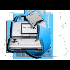 Remplacement port  jeu Nintendo DS